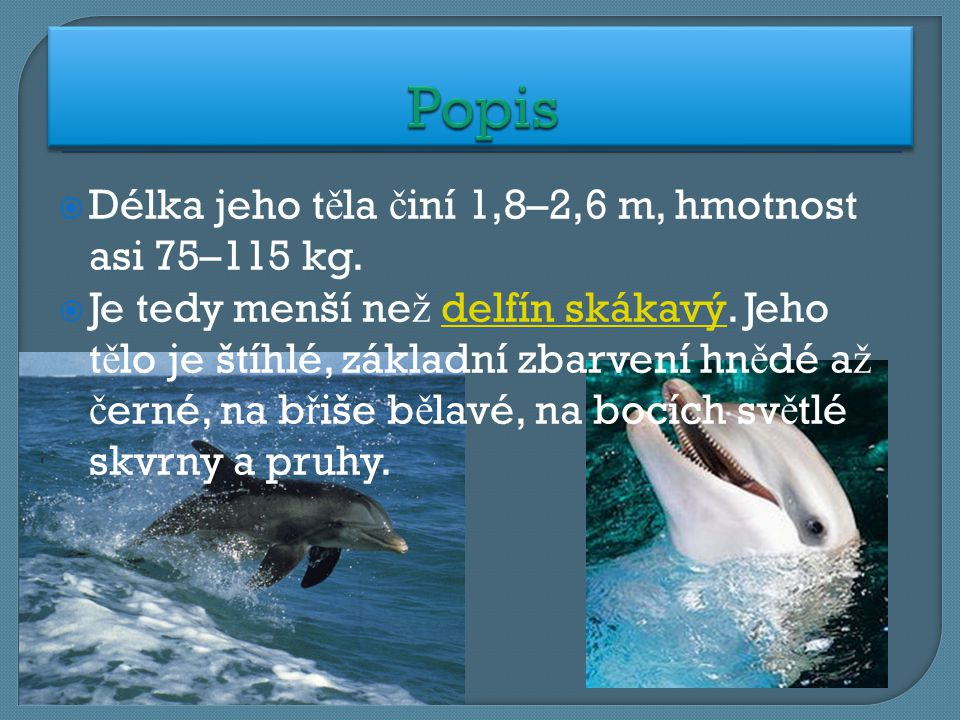 Popis Délka jeho těla činí 1,8–2,6 m, hmotnost asi 75–115 kg.