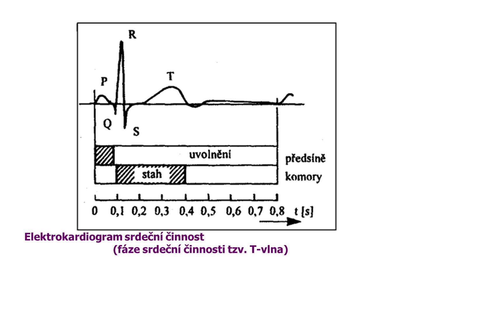 (fáze srdeční činnosti tzv. T-vlna)
