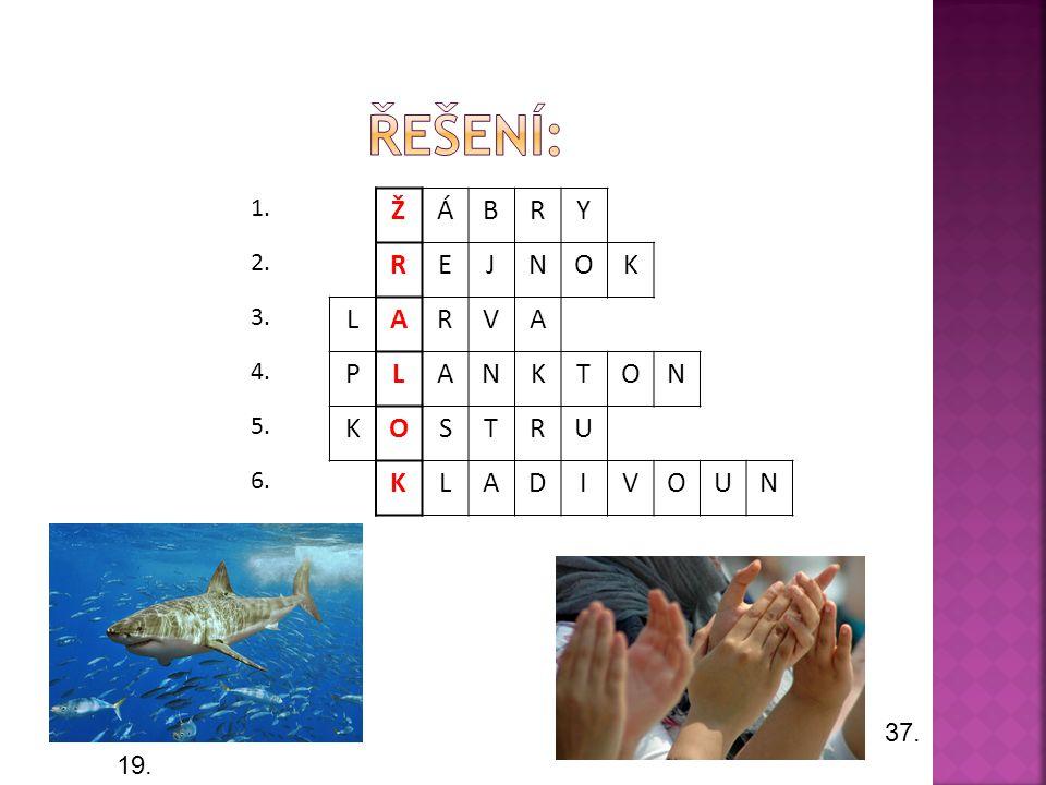 Řešení: Ž Á B R Y E J N O K L A V P T S U D I 1. 2. 3. 4. 5. 6. 37.