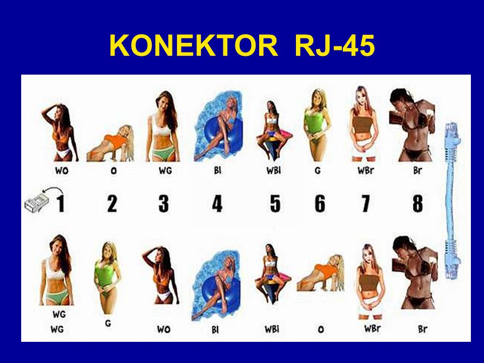 KONEKTOR RJ-45