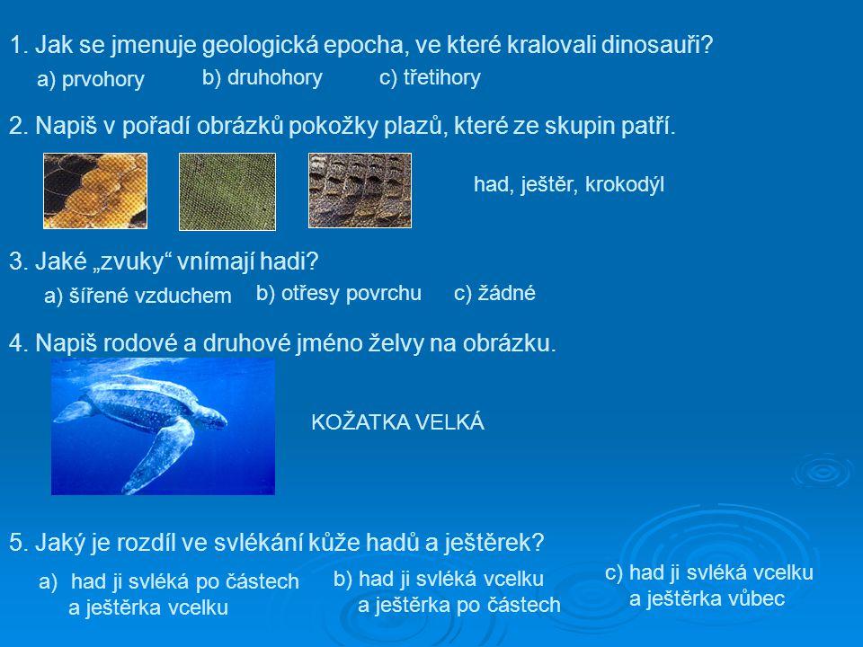 1. Jak se jmenuje geologická epocha, ve které kralovali dinosauři