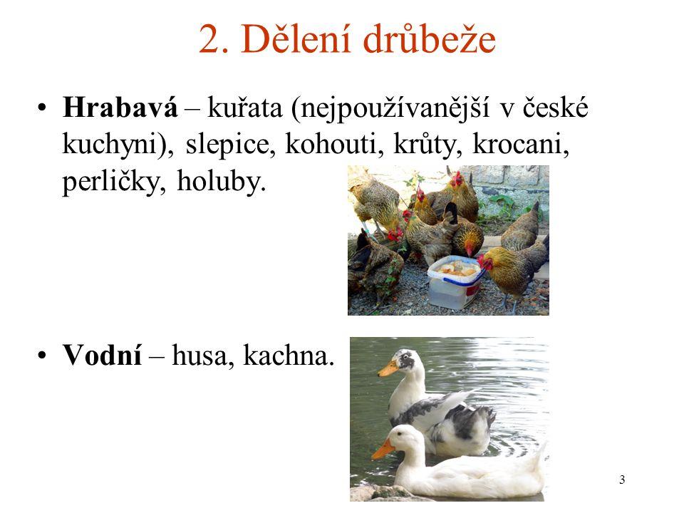 2. Dělení drůbeže Hrabavá – kuřata (nejpoužívanější v české kuchyni), slepice, kohouti, krůty, krocani, perličky, holuby.