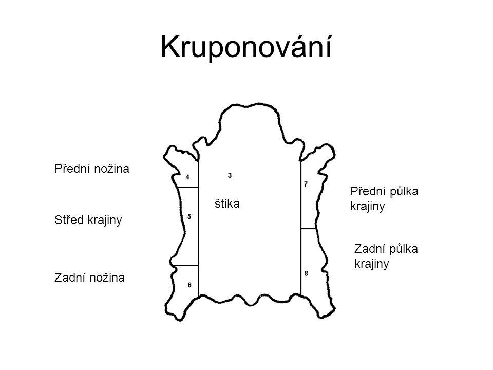 Kruponování Přední nožina Přední půlka krajiny štika Střed krajiny