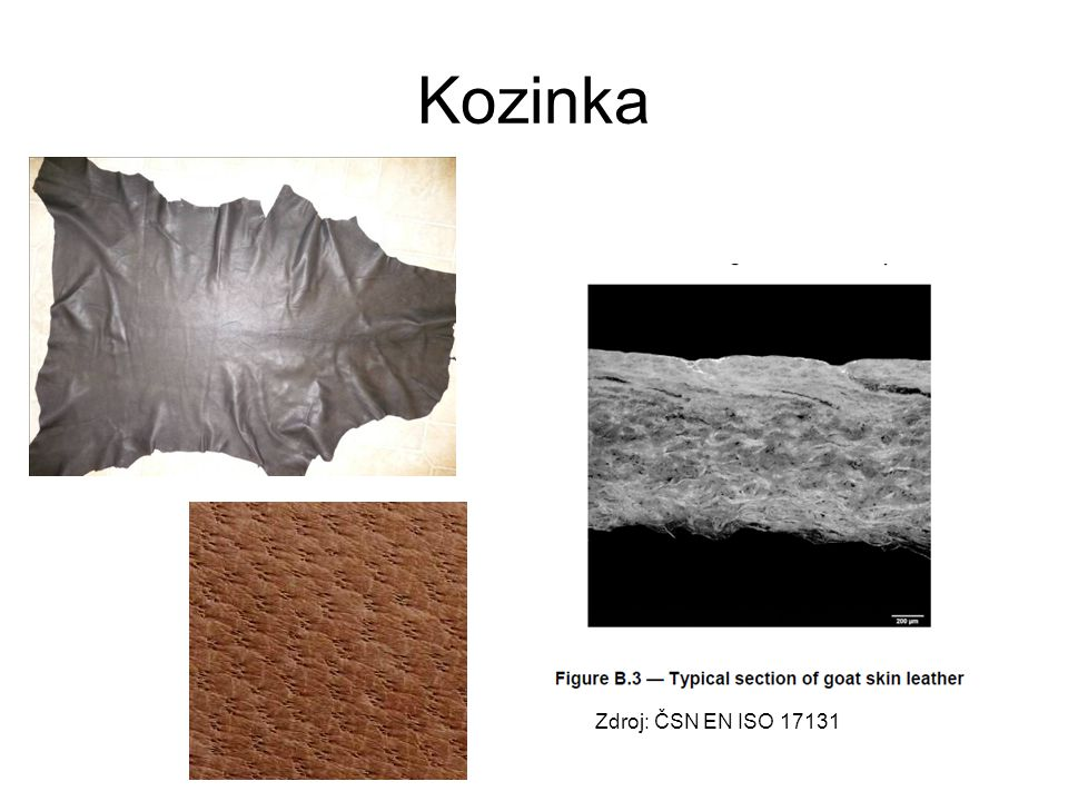 Kozinka Zdroj: ČSN EN ISO 17131