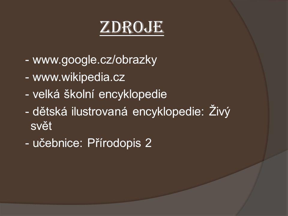 ZDROJE - www.google.cz/obrazky - www.wikipedia.cz - velká školní encyklopedie - dětská ilustrovaná encyklopedie: Živý svět - učebnice: Přírodopis 2