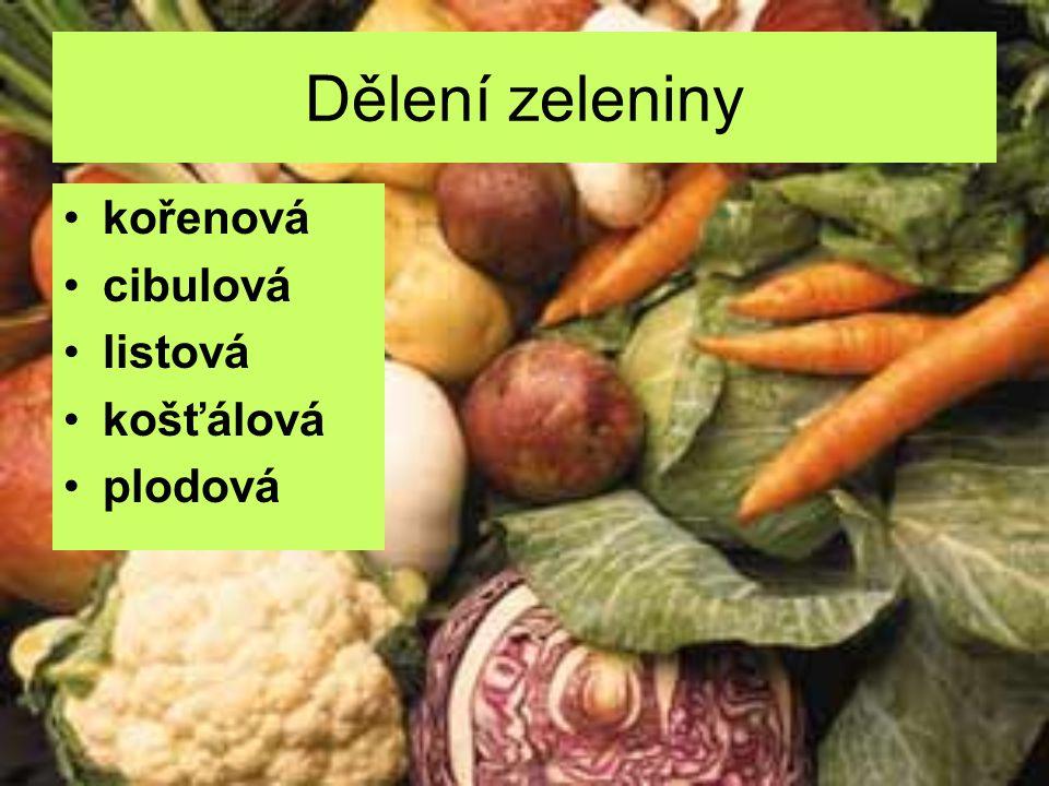 Dělení zeleniny kořenová cibulová listová košťálová plodová
