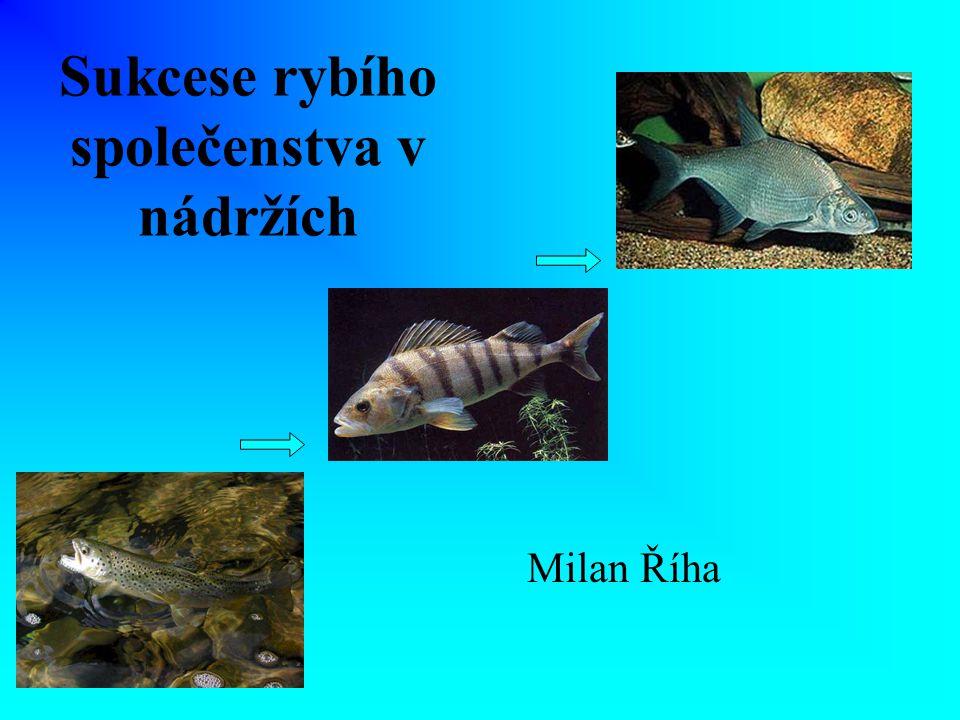 Sukcese rybího společenstva v nádržích