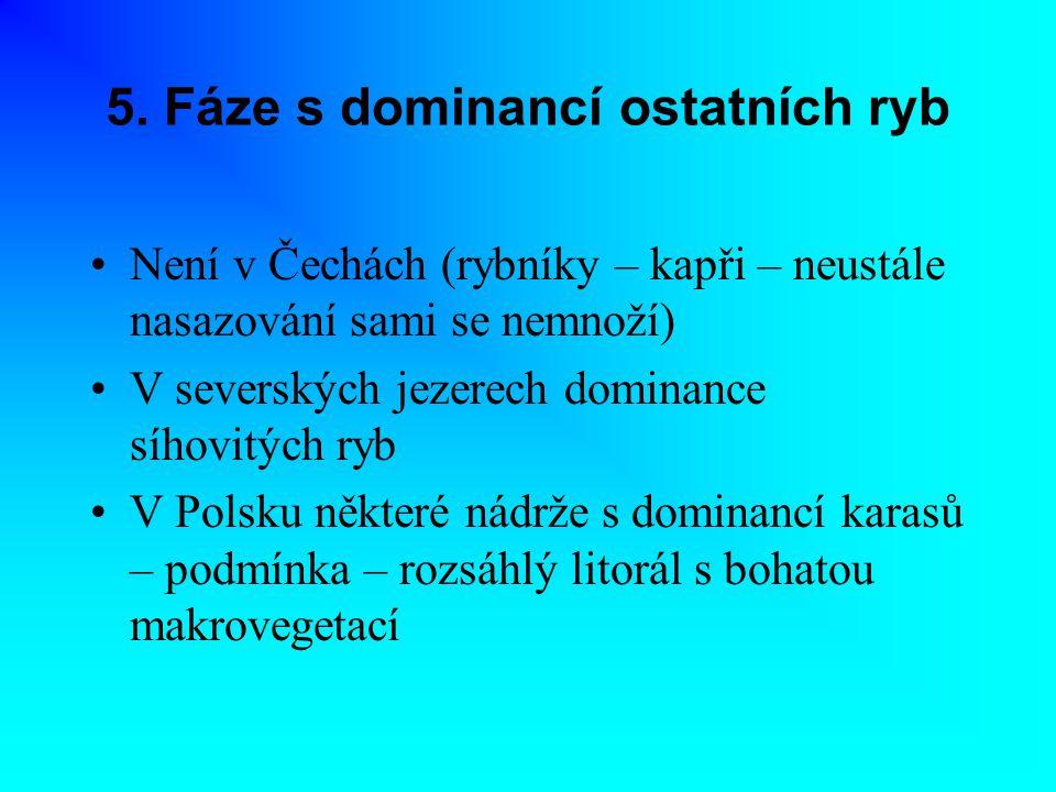 5. Fáze s dominancí ostatních ryb