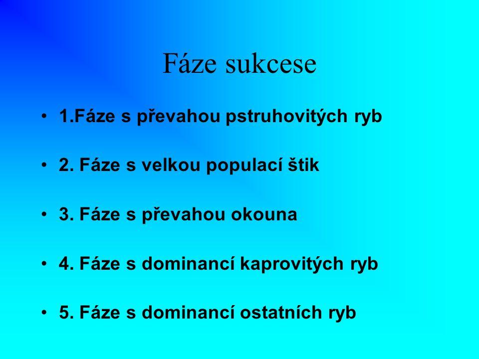 Fáze sukcese 1.Fáze s převahou pstruhovitých ryb