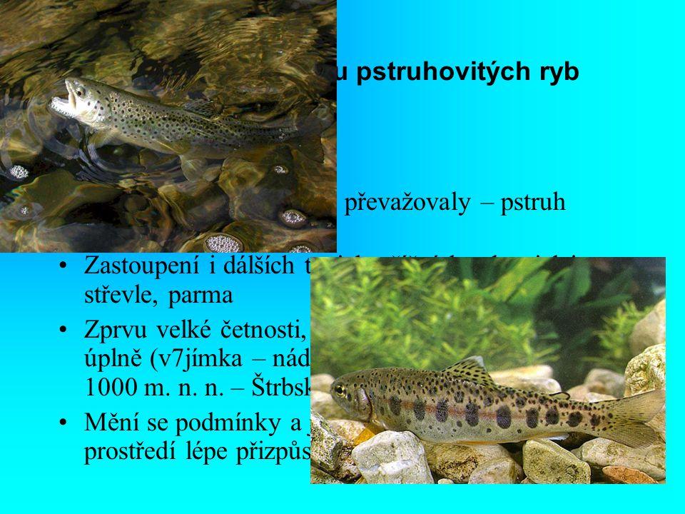 1. Fáze s převahou pstruhovitých ryb