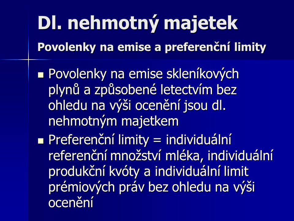Dl. nehmotný majetek Povolenky na emise a preferenční limity