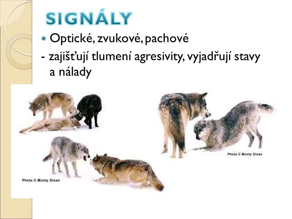 SIGNÁLY Optické, zvukové, pachové
