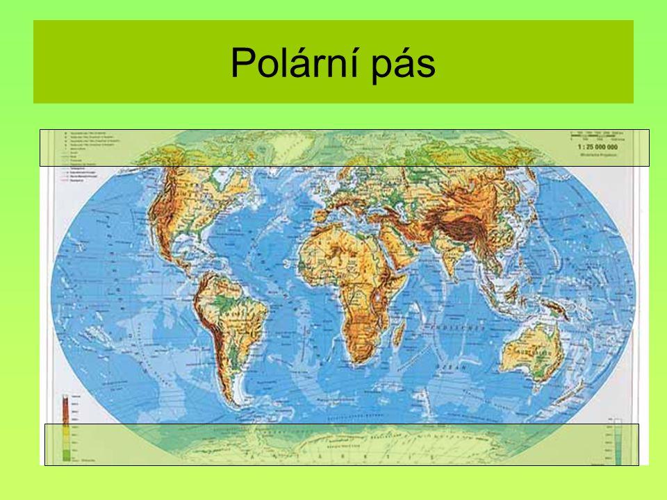 Polární pás