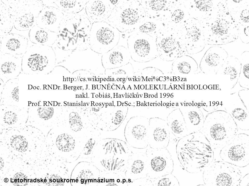 http://cs. wikipedia. org/wiki/Mei%C3%B3za Doc. RNDr. Berger, J
