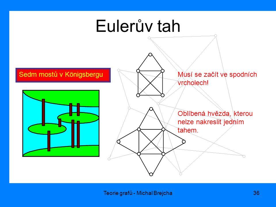 Teorie grafů - Michal Brejcha