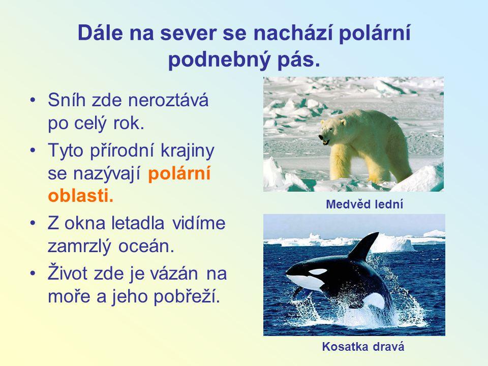 Dále na sever se nachází polární podnebný pás.
