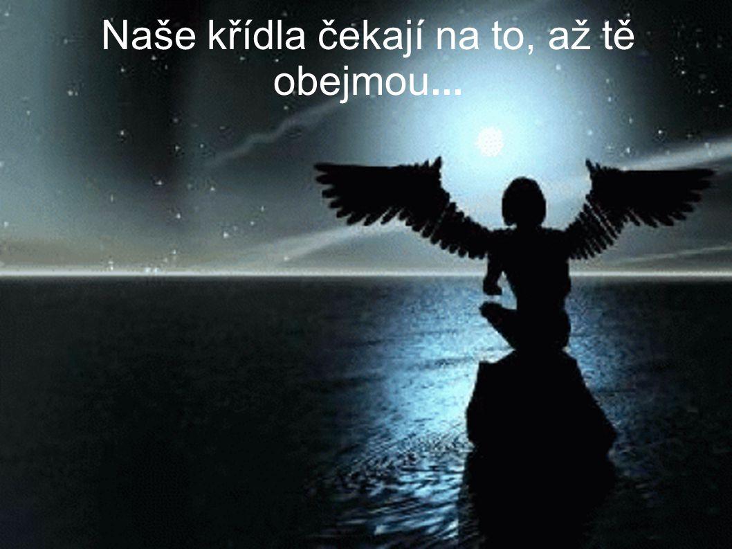 Naše křídla čekají na to, až tě obejmou...