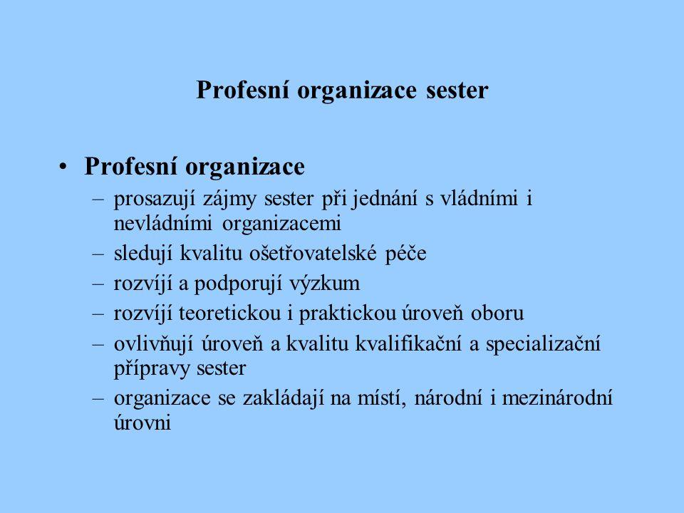 Profesní organizace sester