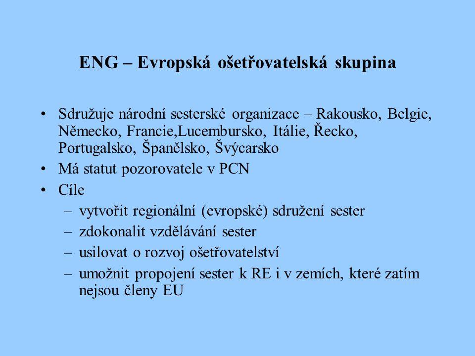 ENG – Evropská ošetřovatelská skupina