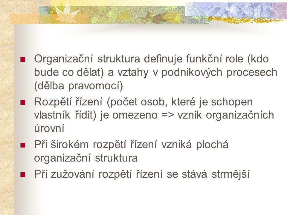 Organizační struktura definuje funkční role (kdo bude co dělat) a vztahy v podnikových procesech (dělba pravomocí)