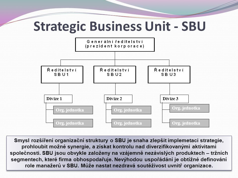 Strategic Business Unit - SBU