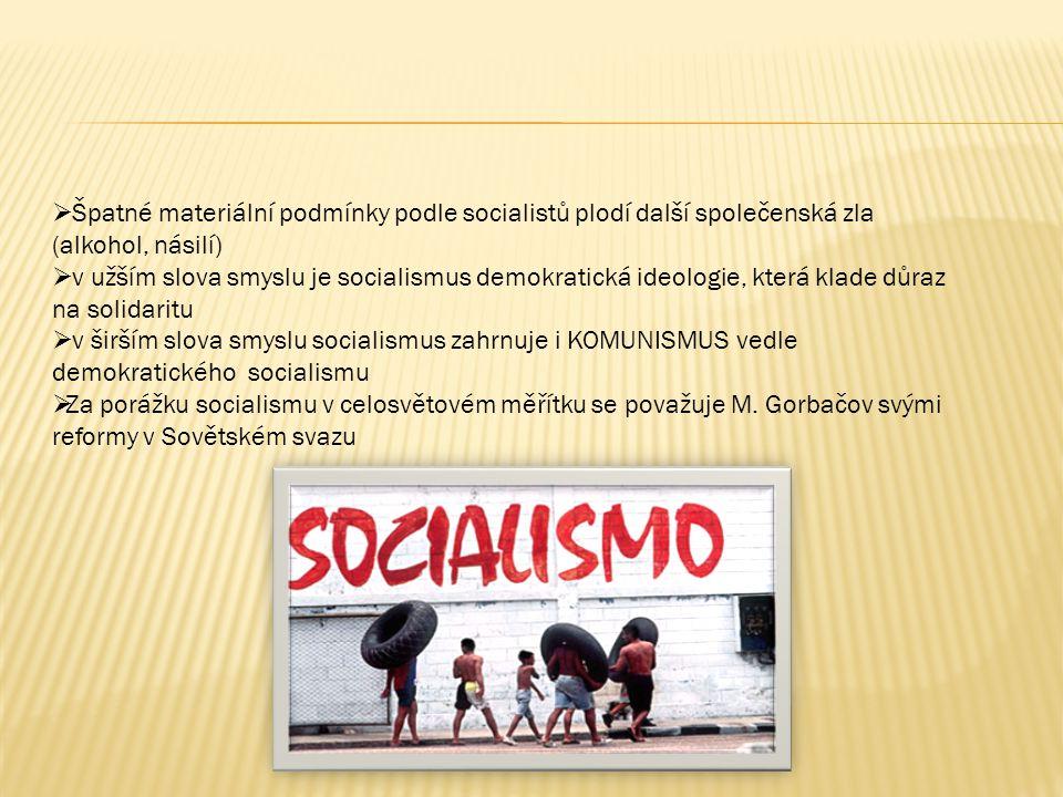 Špatné materiální podmínky podle socialistů plodí další společenská zla (alkohol, násilí)