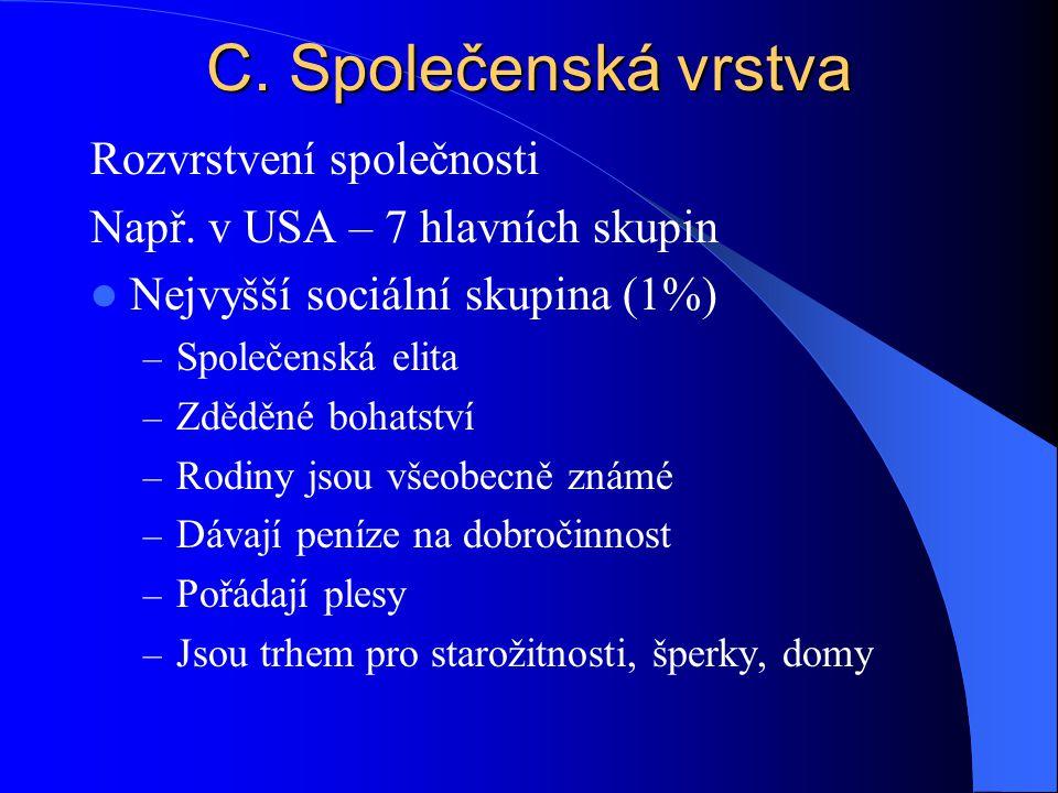 C. Společenská vrstva Rozvrstvení společnosti