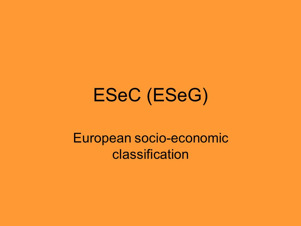 European socio-economic classification
