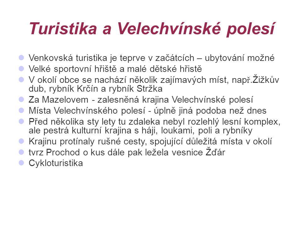 Turistika a Velechvínské polesí