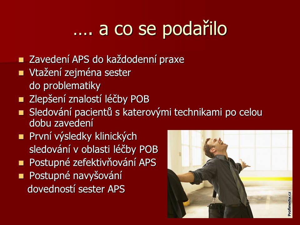 …. a co se podařilo Zavedení APS do každodenní praxe