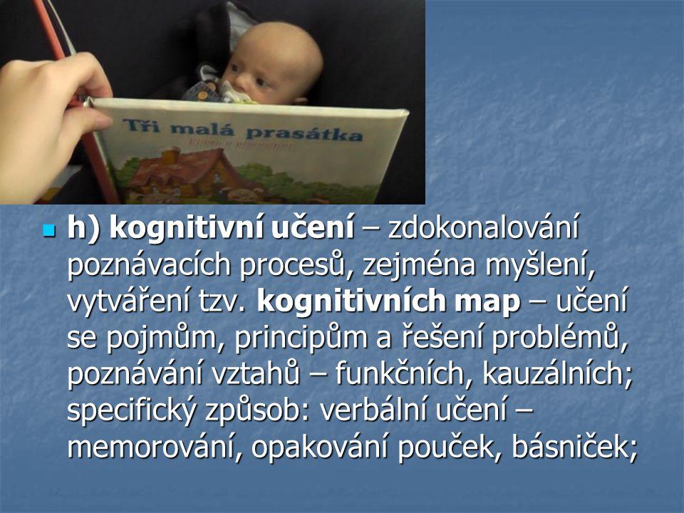 h) kognitivní učení – zdokonalování poznávacích procesů, zejména myšlení, vytváření tzv.