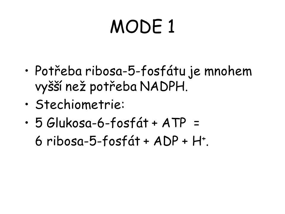 MODE 1 Potřeba ribosa-5-fosfátu je mnohem vyšší než potřeba NADPH.