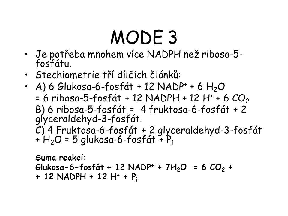 MODE 3 Je potřeba mnohem více NADPH než ribosa-5-fosfátu.