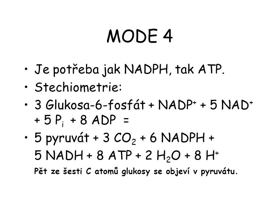 MODE 4 Je potřeba jak NADPH, tak ATP. Stechiometrie: