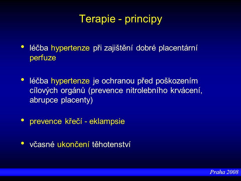 Terapie - principy léčba hypertenze při zajištění dobré placentární perfuze.