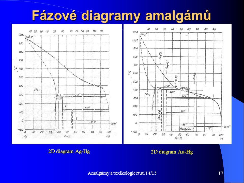 Fázové diagramy amalgámů