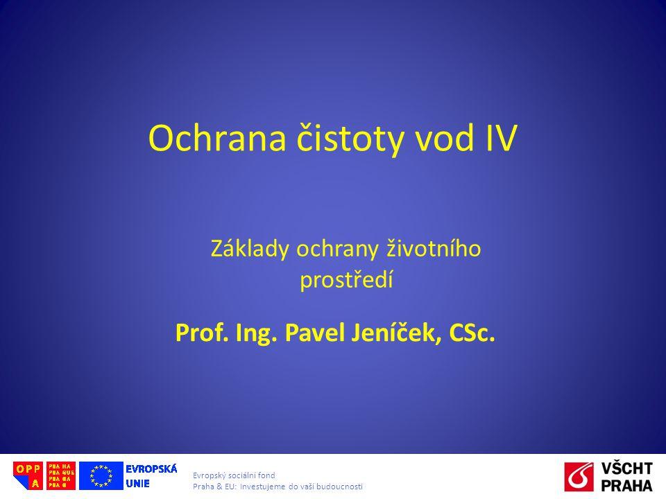 Prof. Ing. Pavel Jeníček, CSc.