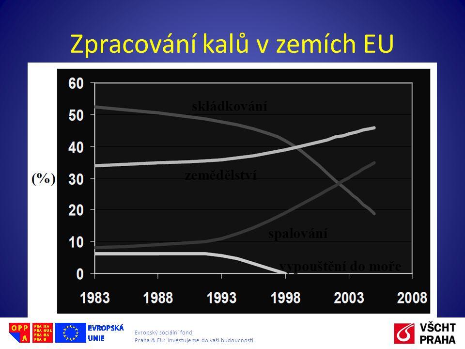 Zpracování kalů v zemích EU