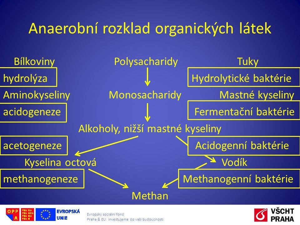 Anaerobní rozklad organických látek