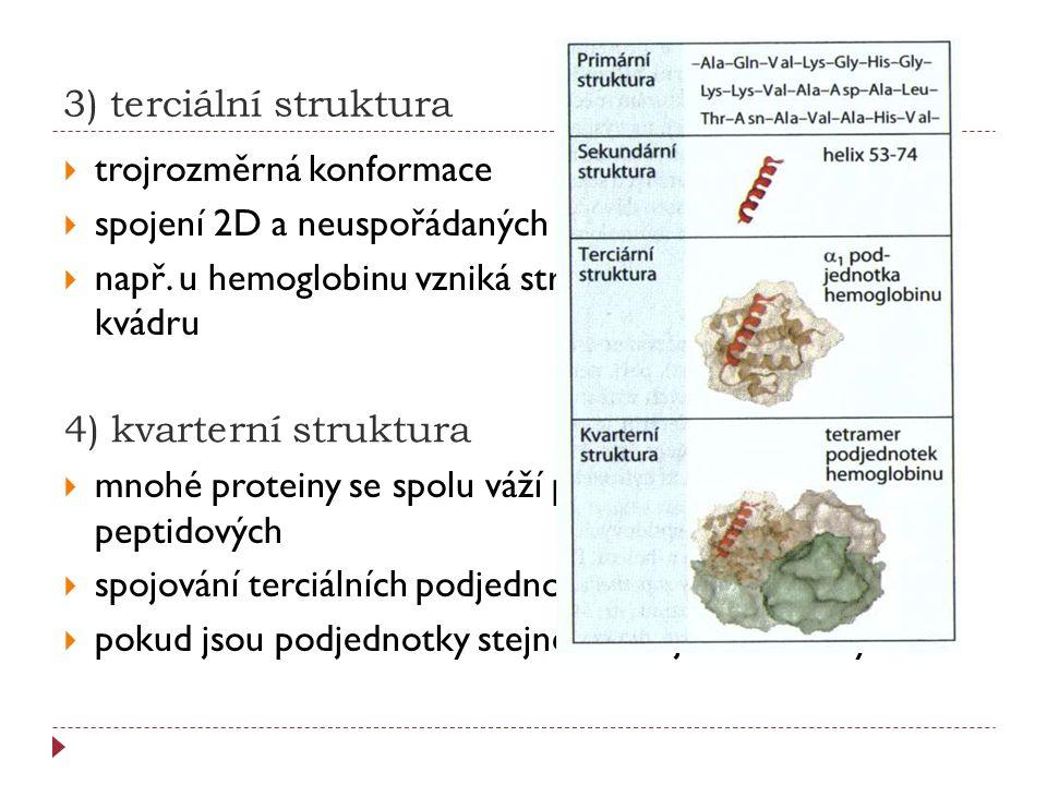 3) terciální struktura trojrozměrná konformace. spojení 2D a neuspořádaných bílkovinných úseků.