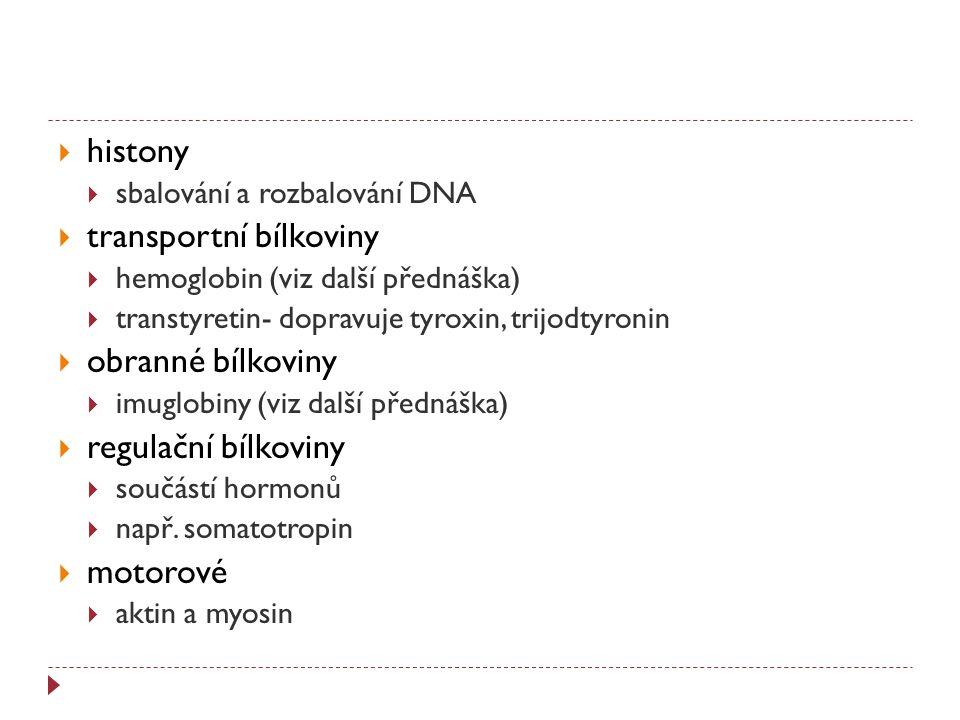 transportní bílkoviny