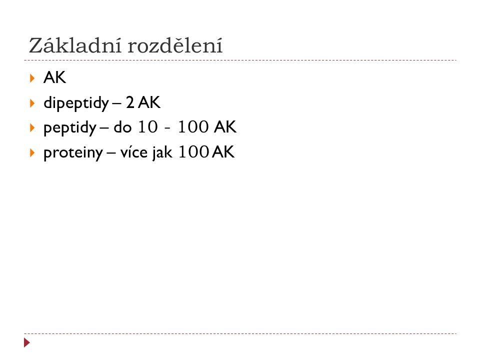 Základní rozdělení AK dipeptidy – 2 AK peptidy – do 10 - 100 AK