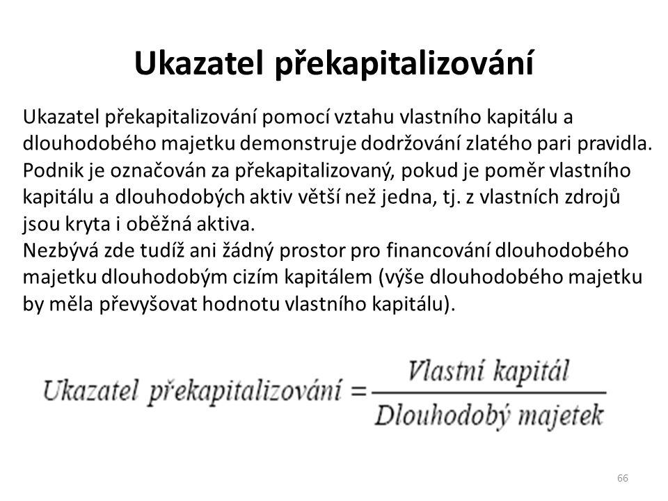 Ukazatel překapitalizování