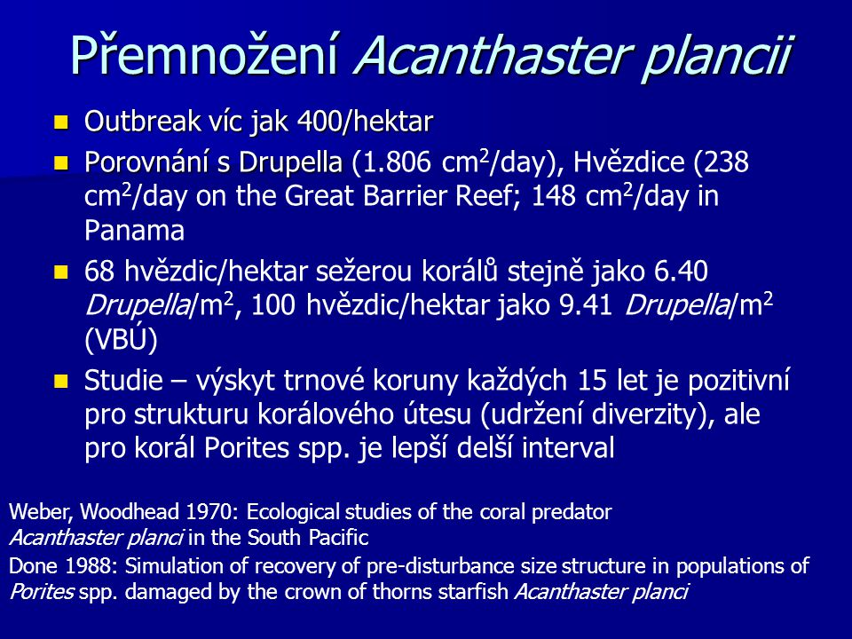 Přemnožení Acanthaster plancii