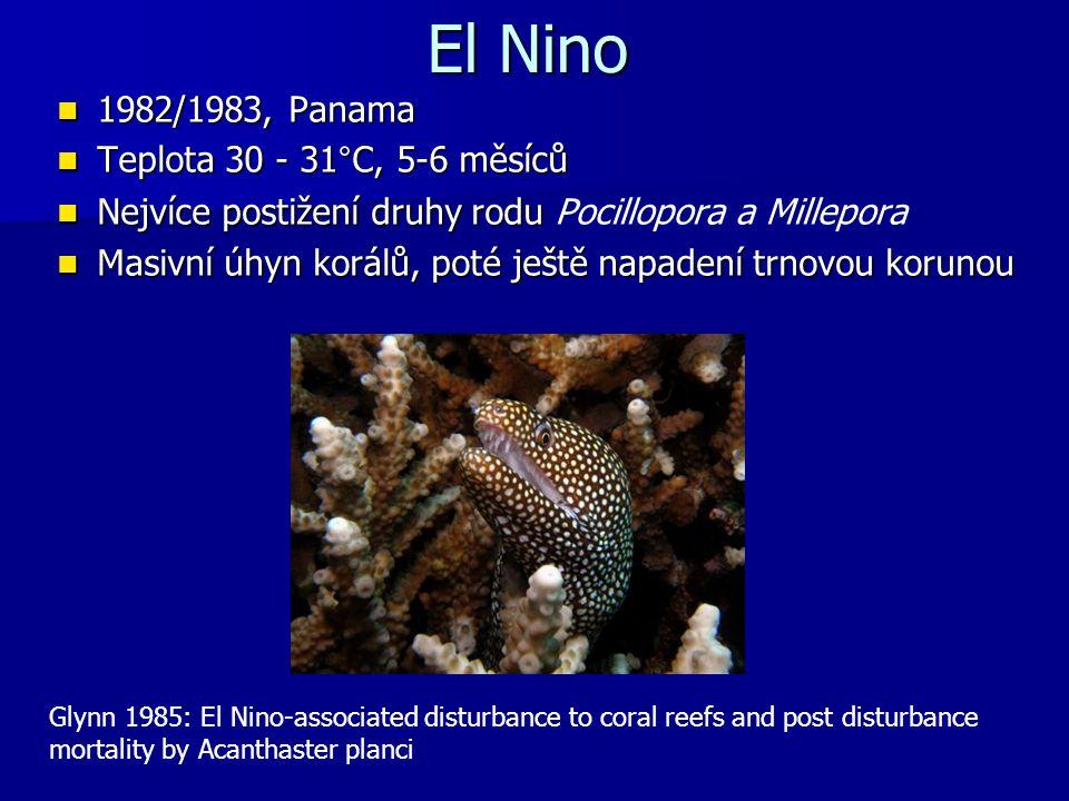 El Nino 1982/1983, Panama Teplota 30 - 31°C, 5-6 měsíců