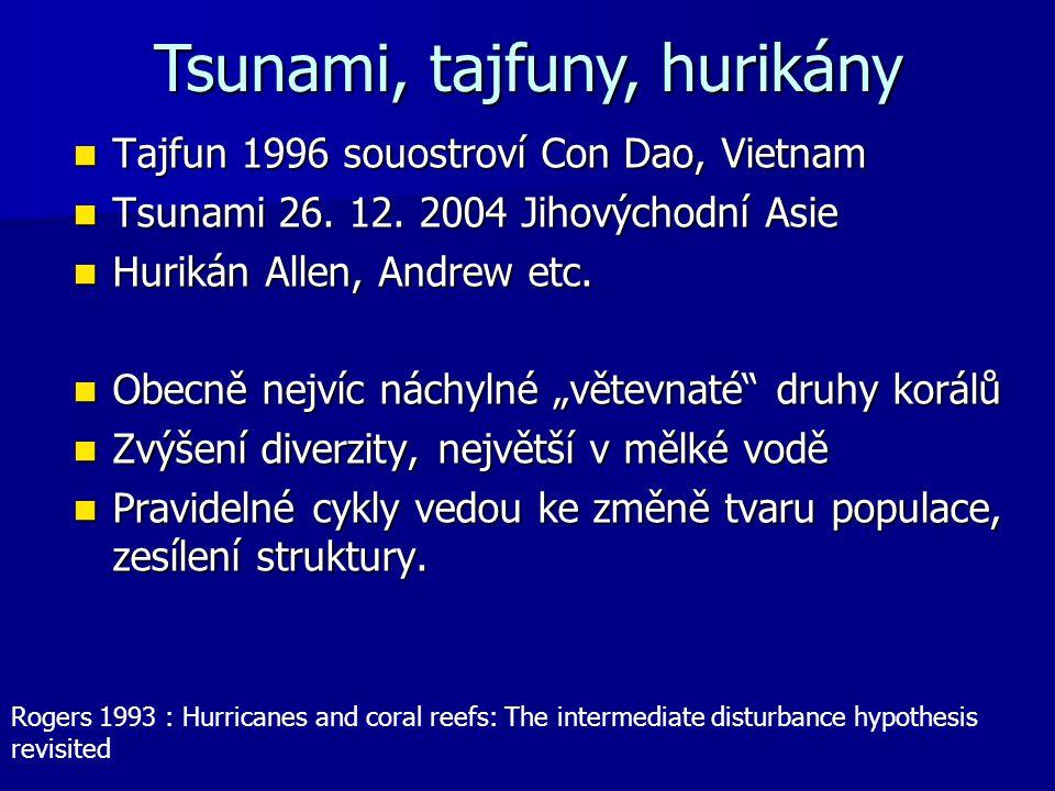 Tsunami, tajfuny, hurikány