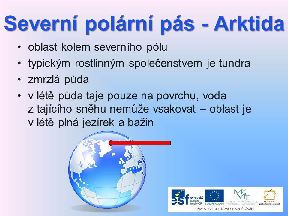 Severní polární pás - Arktida