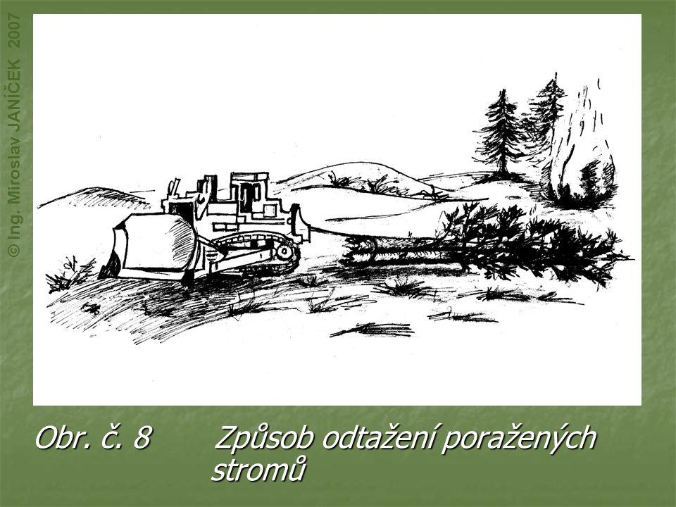 Obr. č. 8 Způsob odtažení poražených stromů