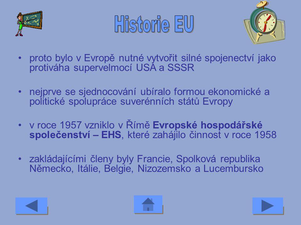 Historie EU proto bylo v Evropě nutné vytvořit silné spojenectví jako protiváha supervelmocí USA a SSSR.
