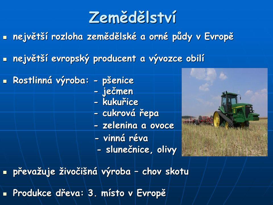 Zemědělství - vinná réva